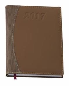 agenda-diaria-201710